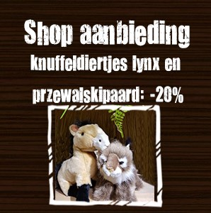 Shop aanbieding november