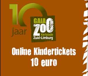 widget - 10 euro ticket